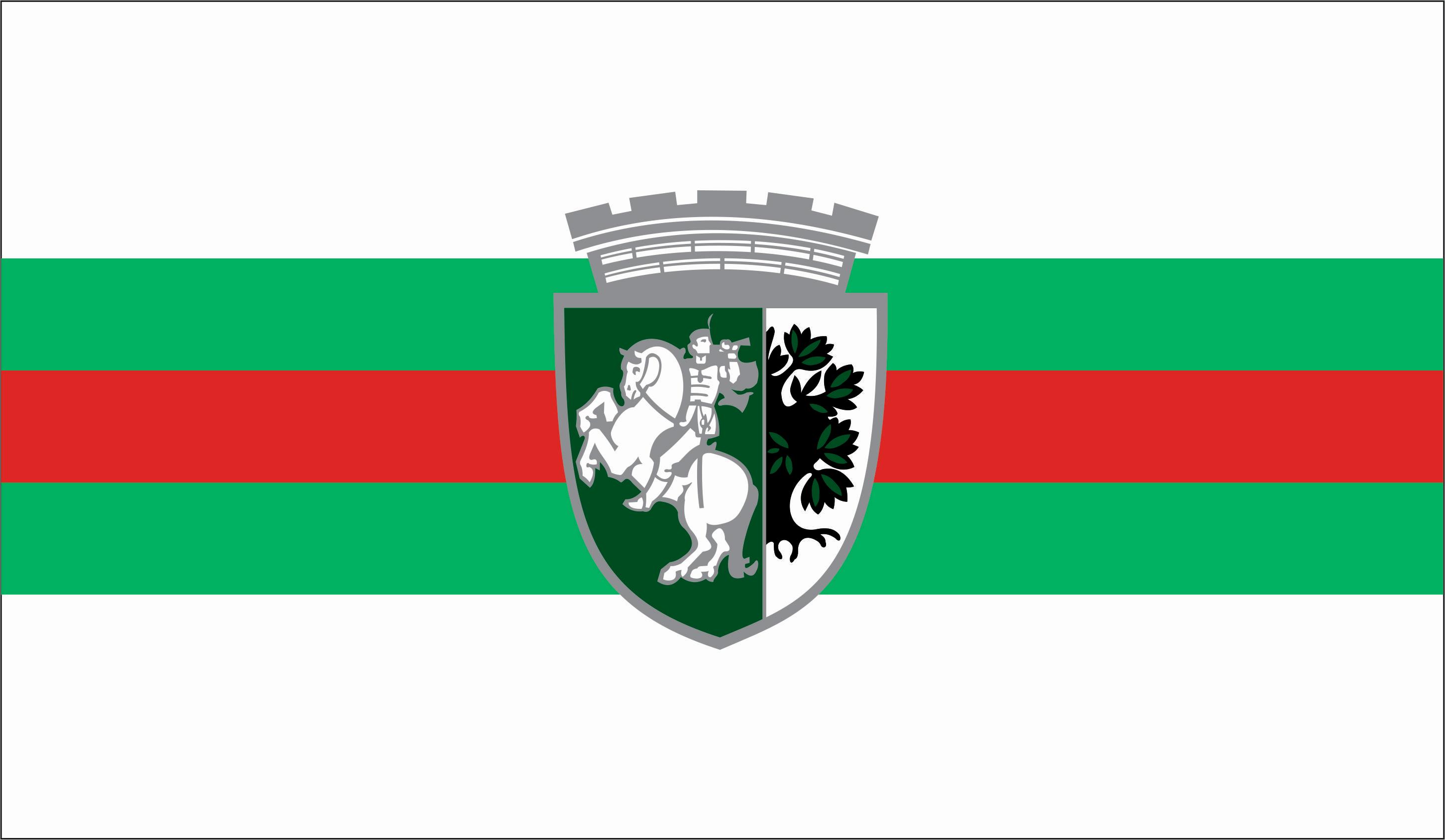 Знаме на Община Сливен