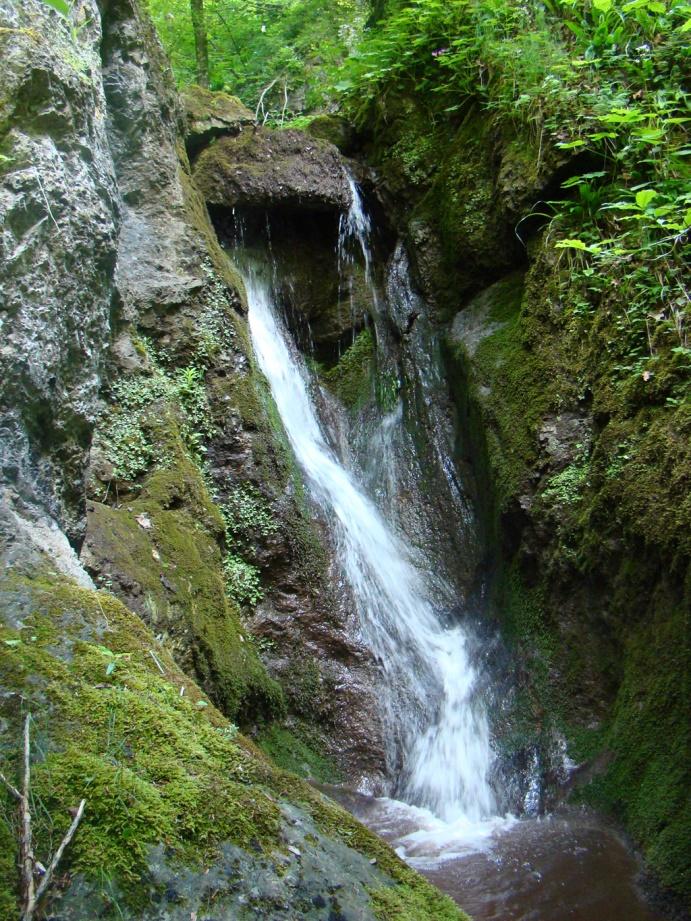 Водопад, Давидова река