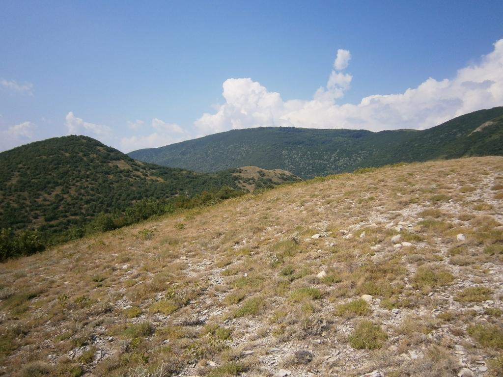 Местообитание тип 62А0 Източно субсредиземноморски сухи тревни съобщества.